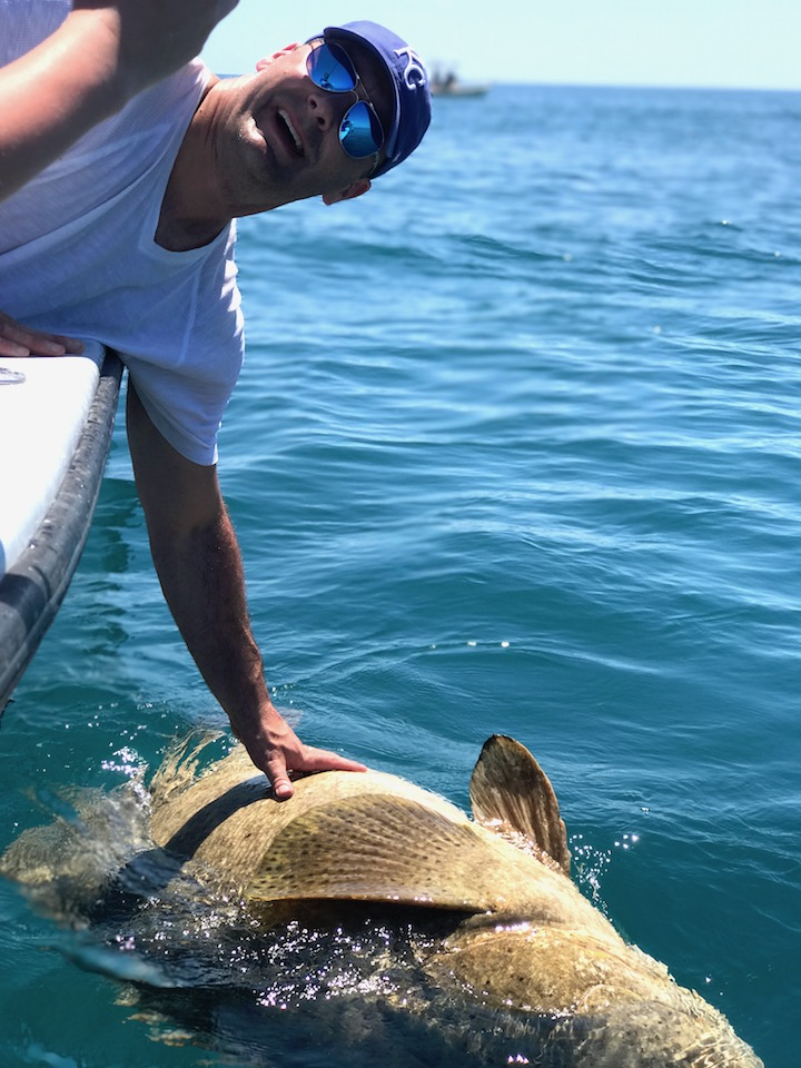 Goliath Grouper Challenge