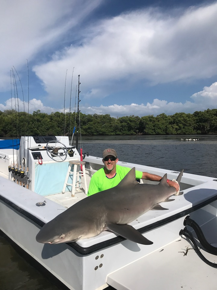 Fishing charters sanibel and ft myers florida captain noah for Shark fishing in florida